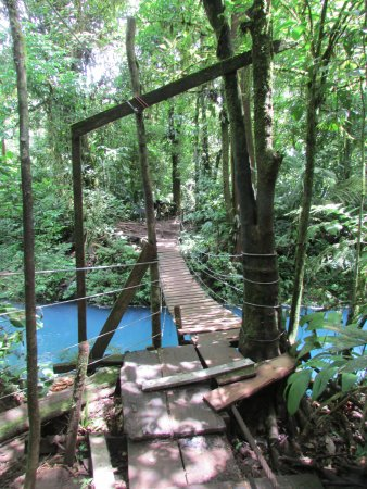 Tenorio Volcano National Park, Costa Rica: Suspension bridge