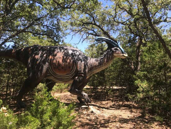 Dinosaur Park | Cedar Creek | UPDATED August 2019 Top Tips