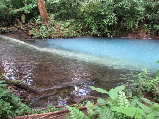 Tenorio Volcano National Park, Costa Rica: Where two rivers meet to form the blue river