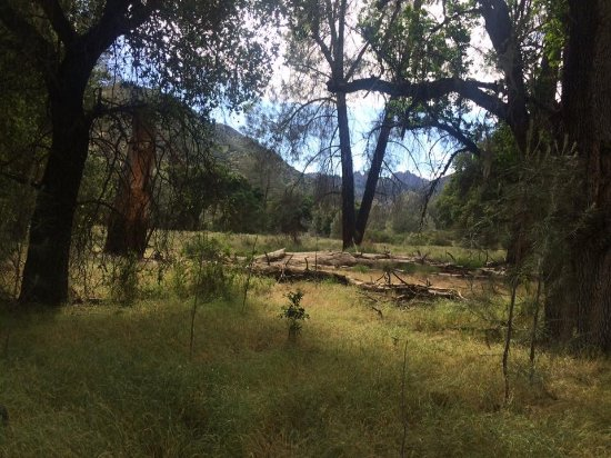 Pinnacles Campground Inc: View of the high peaks from the Bench Trail that leads out of the campground