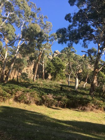 Woodend, Австралия: photo2.jpg