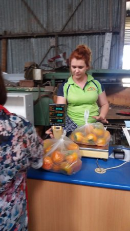 Picton, Australia: Paying for your fruit