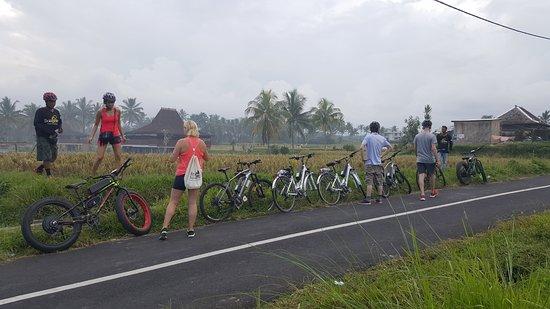 Bali eBikes