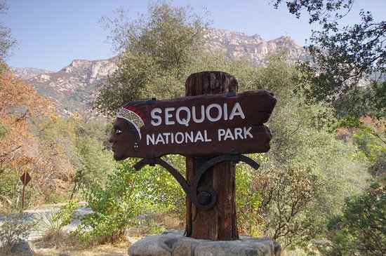 Three Rivers, CA: Sequoia NP's southern entrance is minutes away from the Comfort Inn...really!
