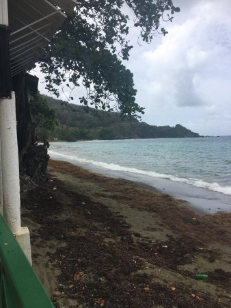 Speyside, Tobago: photo1.jpg