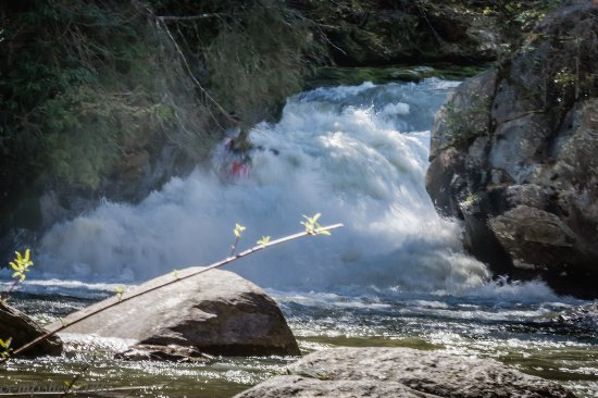 Pulliam Creek Trailhead: Green River Narrows kayakers