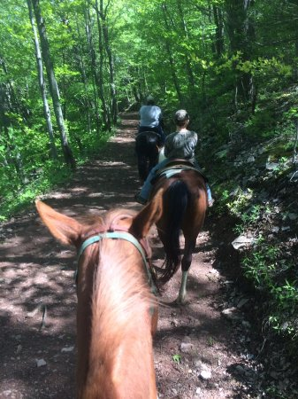 Seneca Rocks, เวสต์เวอร์จิเนีย: Heading down the mountain. Riding Possum, Champ & George