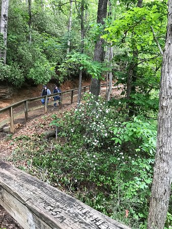 Walhalla, SC: Don't forget the railway trail to the other two tunnels!