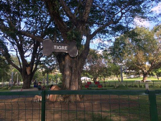 Parque Luis Munoz Marin