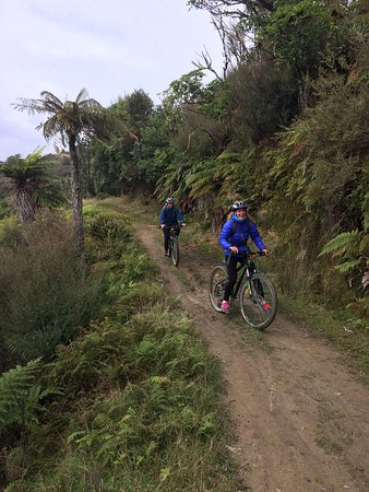 National Park Village, Nueva Zelanda: Enjoying Fishers Track!