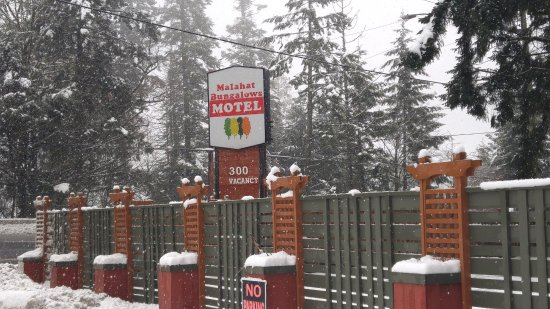 Malahat Bungalows Motel: from the road