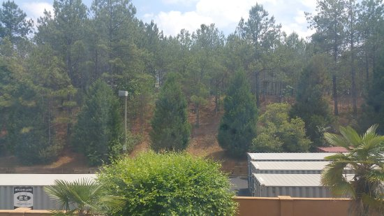 Suwanee, GA: hill view