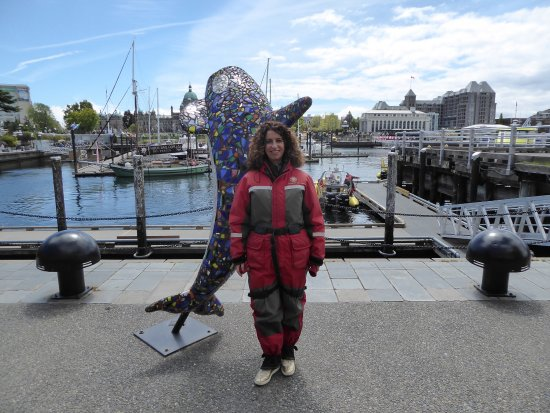 photo2.jpg - Picture of Prince of Whales Whale Watching, Victoria - TripAdvisor