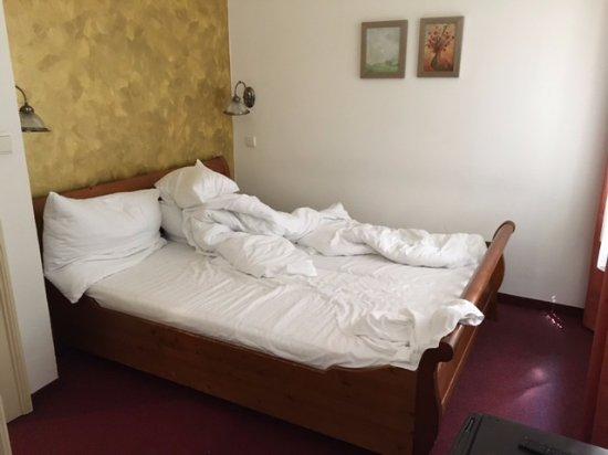 Hotel Golden deer照片