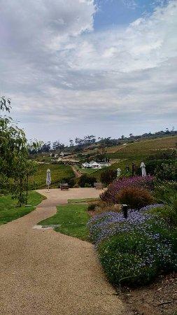 Constantia, Südafrika: The beautiful Wine Farm