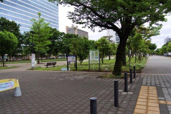 Zdjęcie Nakano