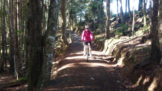 Bay of Islands, Νέα Ζηλανδία: Twin Coast Trail