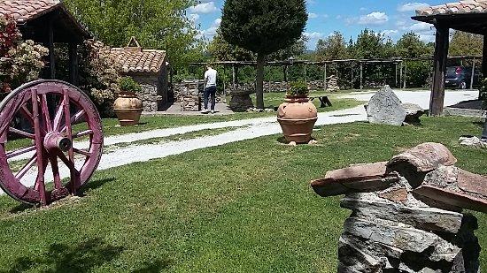 Agriturismo i  Monti: 20170513_125205_large.jpg