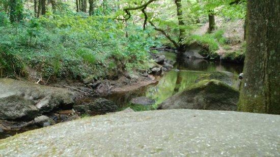 Forêt de Huelgoat, entre mythes et légendes