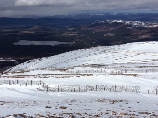 Aviemore, UK: Toward Loch Morlich