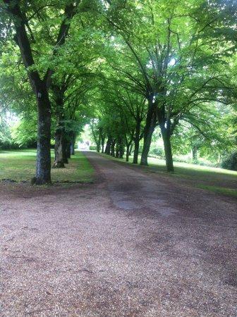Esvres, Frankrig: allée du parc