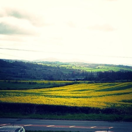 Bromyard, UK: Breathtaking views over the Malvern hills