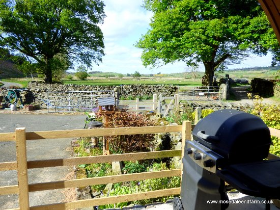 Mosedale End Farm Bed and Breakfast & Glamping Pod: View from the Glamping Pod at Mosedale End Farm