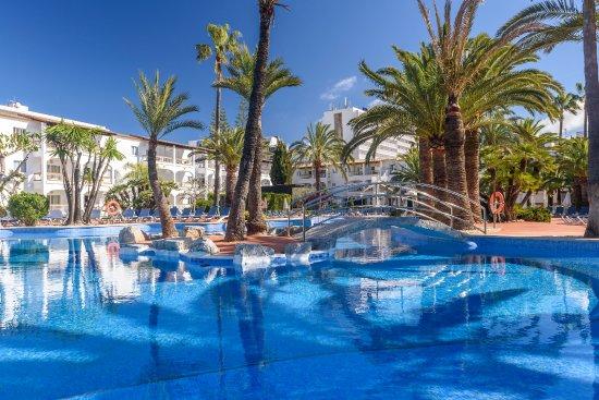 Alcudia Garden Palm Garden Beach Garden Mallorca