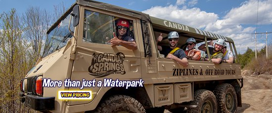 Candia, NH : One of our austrian pinzgauers