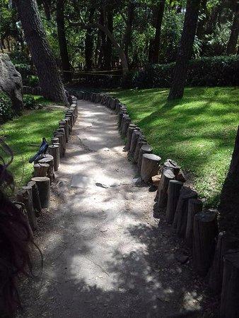 Sendero del jard n japon s picture of bosque colomos for Jardin japones