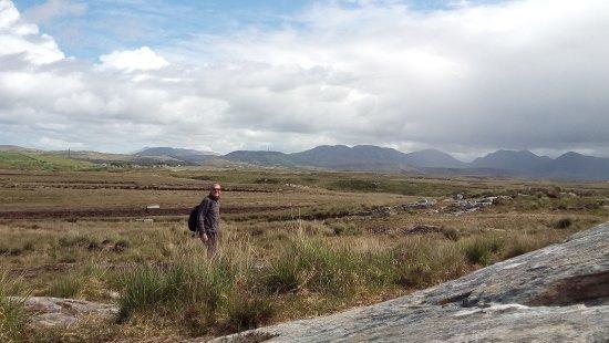 All Things Connemara : 20170514_113627-01_large.jpg