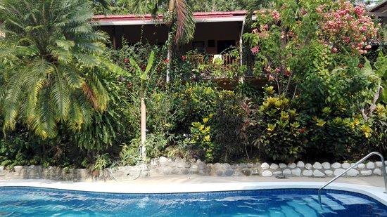 Obraz Hotel Belvedere - Playa Samara