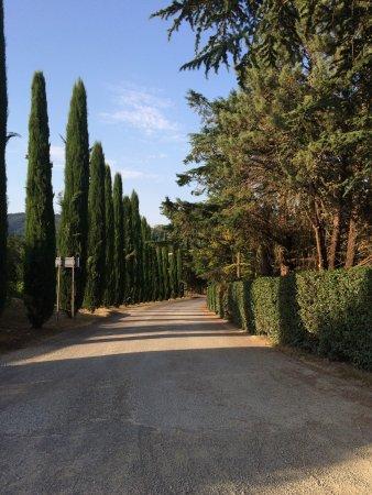 Ваглиагли, Италия: photo0.jpg