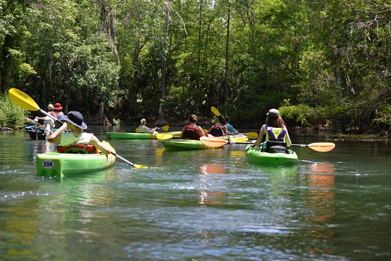 Silver Springs, FL: Floating down the Silver River