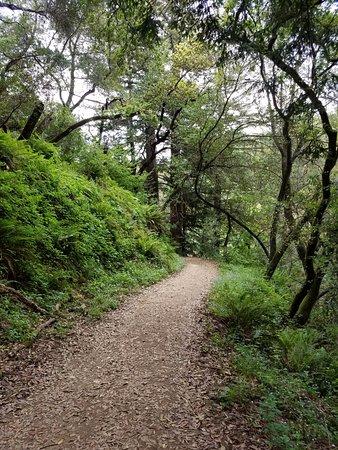 Oakland, Kalifornien: Good trails