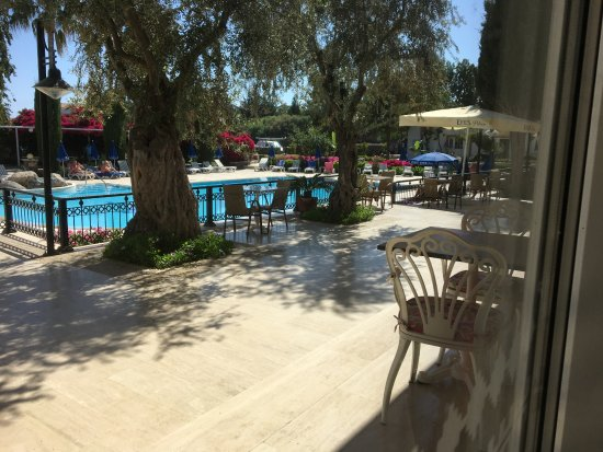Ozankoy, Siprus: View from breakfast/ dining area