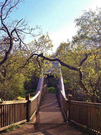 Callander, UK: Le pont surplombant les chutes