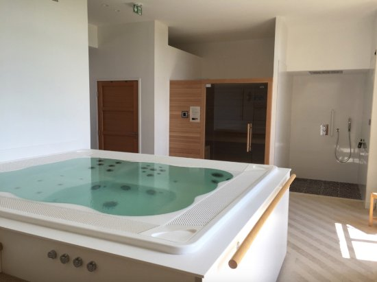 Cahuzac-sur-Vere, ฝรั่งเศส: Jacuzzi & sauna