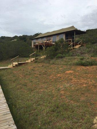 Amakhala Game Reserve, South Africa: photo1.jpg