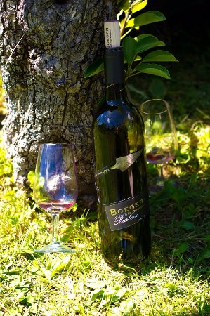 Placerville, Kaliforniya: Boeger Winery