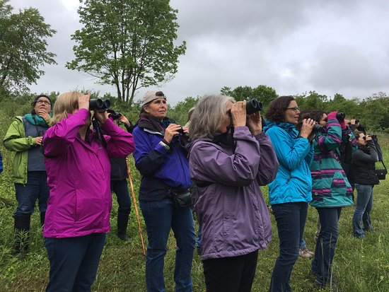Bird watchers at Cool Spring Preserve