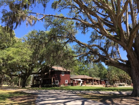 Reddick, FL: photo3.jpg