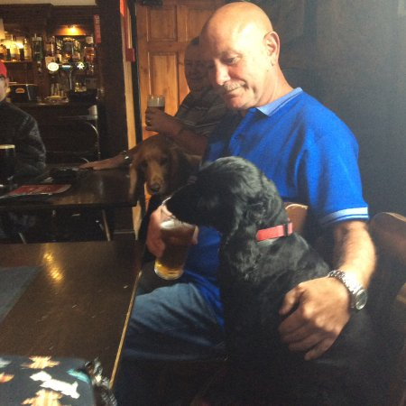 Thornhill, UK: Canine and human regulars in the public bar.
