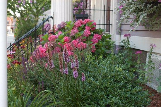 Spring Seasons Inn & Tea Room: Flowers in bloom
