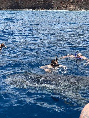 Captain Steve's Rafting : photo2.jpg
