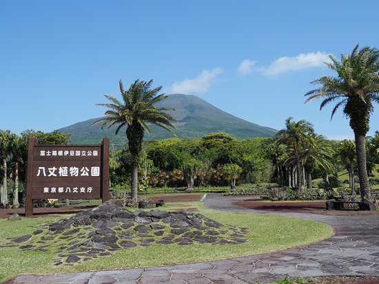 Taman Botani Hachijo