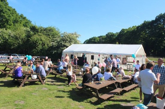 Ferndown, UK: BBQ party with marquee's, DJ and bouncy castles.