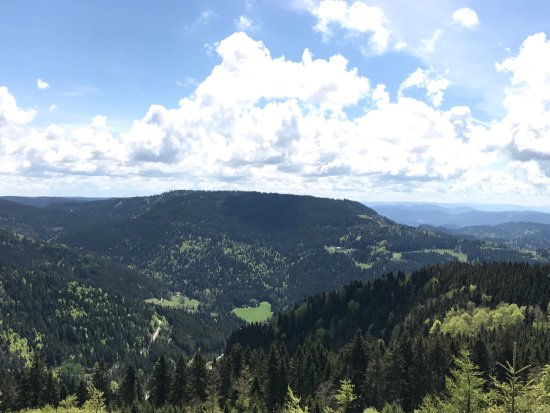 Black Forest, ألمانيا: An amazing, breath taking drive. A must to do when in Stuttgart - its closer from Stuttgart than