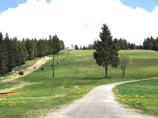 Schwarzwald, Deutschland: An amazing, breath taking drive. A must to do when in Stuttgart - its closer from Stuttgart than