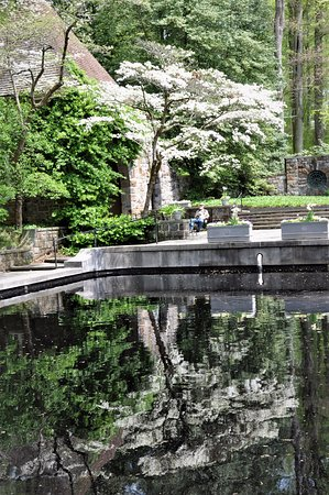 Winterthur, DE: Reflection spring blossoms